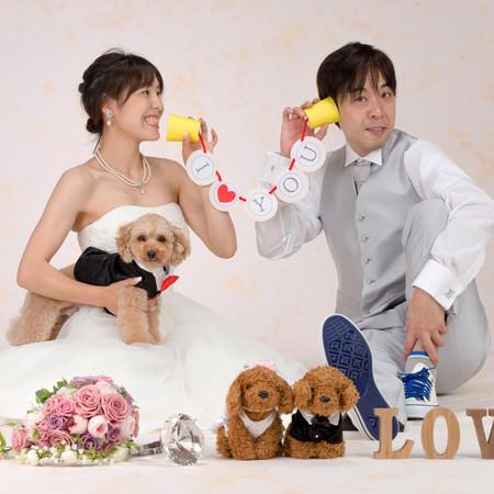 ドレス ウェディングドレス ペット スタジオ ブーケ 糸電話 イニシャルオブジェ