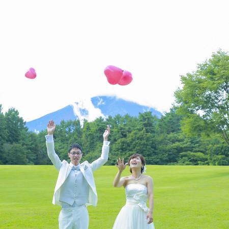 ロケーション 緑 富士山