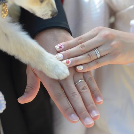和装 ロケーション 神社 ペットと一緒 指輪 ブライダルネイル