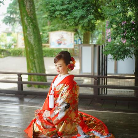 色打ち掛け 和装 庭園 ロケーション 神社 華雅苑 和装前撮り 緑