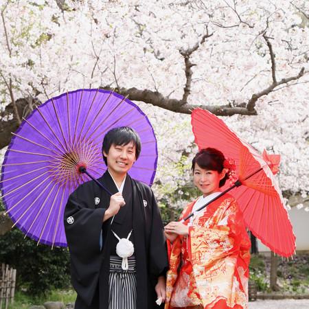 和装 ロケーション 色打掛 フォトウェディング 桜 庭園