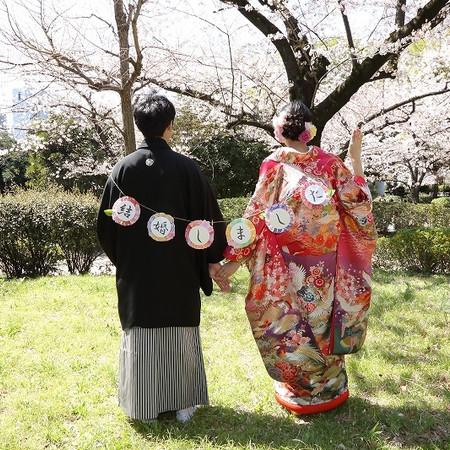 和装 色打掛 ロケーション 桜 庭園 紋付袴