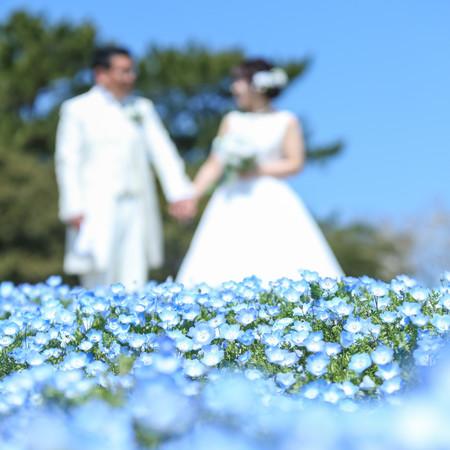 ドレス ロケーション ウェディングドレス 観光地 福岡