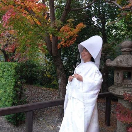 和装 白無垢 綿帽子 色打掛 ロケーション 庭園 紅葉