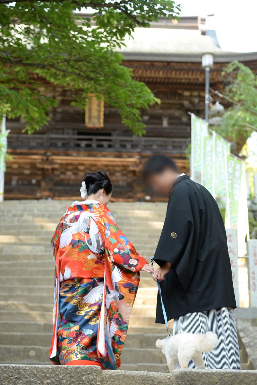 和装 色打掛け 紋付袴 ロケーション 神社 ペットと一緒